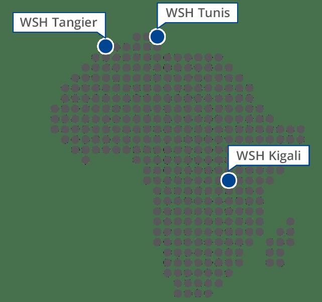 Westerwelle Foundation in Africa